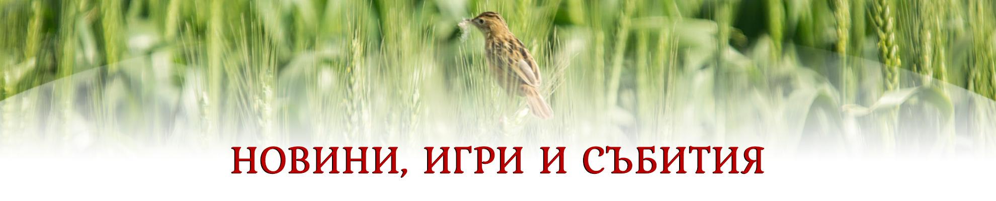 """Новини - Фирма """"Млин-97"""" участва в  25-то издание на GULFOOD"""